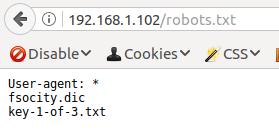 mr_robots.txt